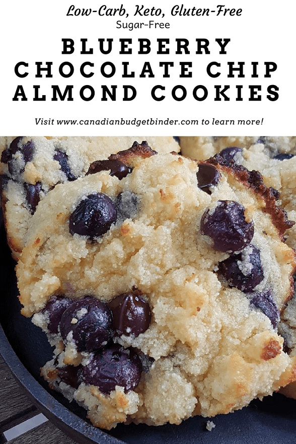 Blueberry Chocolate Chip Almond Cookies